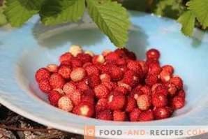 Како да замрзнете диви јагоди