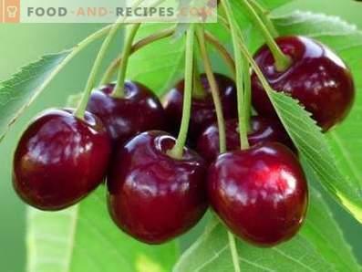 Слатка цреша: здравствени придобивки и штети