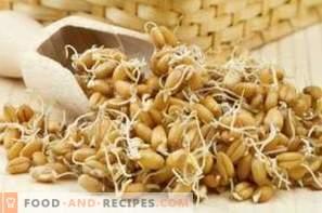 Како да 'ртат пченица