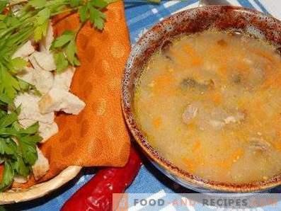 Супа от скумрия в бавно готварска печка